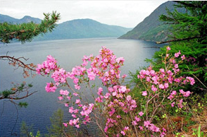 Телецкое озеро--