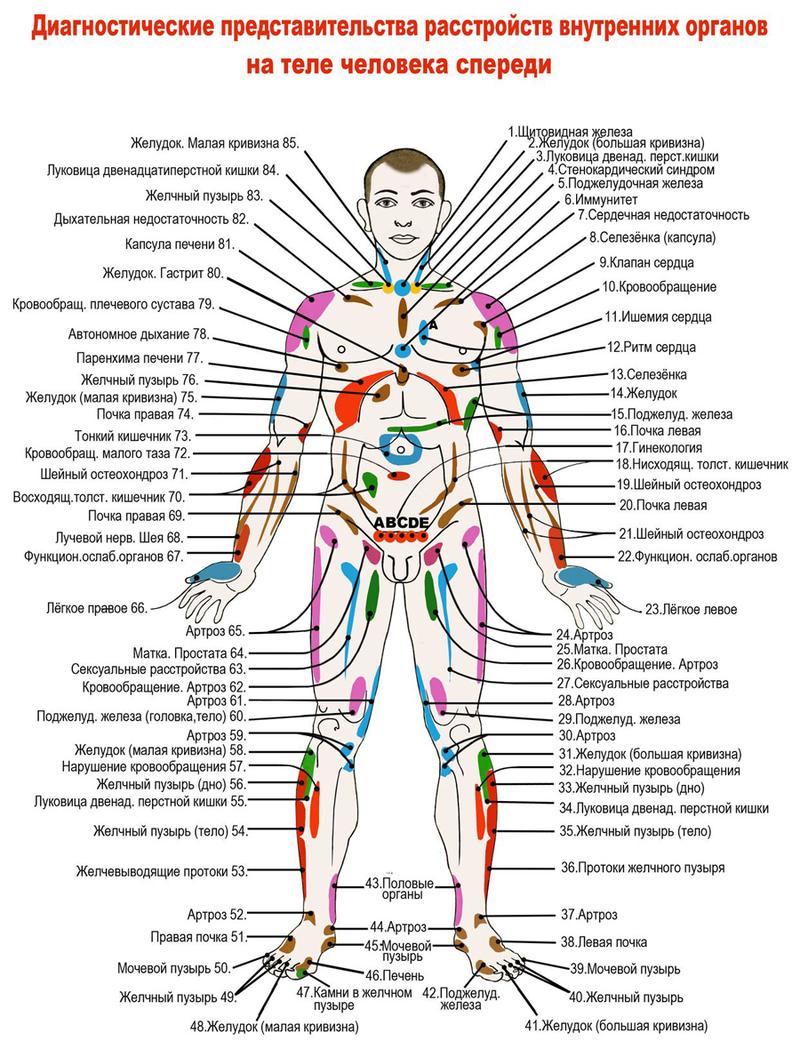 диагностика органов