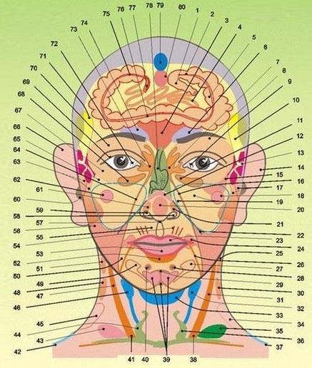 Диагностика здоровья по лицу и шее 2